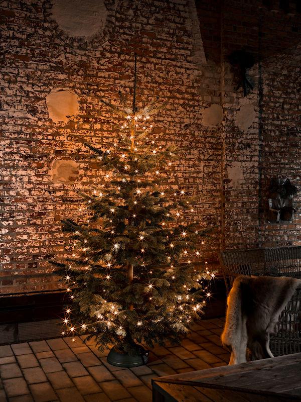 Weihnachtsbeleuchtung Außen Für Große Bäume.Konstsmide Led Baummantel Glimmer Für Große Tannenbäume 560 Led